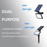 La pared de luz solar y el césped CON LÁMPARA DE LED