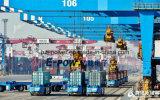 Hochleistungs--Qualitätslithium-Batterie-Satz für automatisiertes geführtes Fahrzeug (AGV)