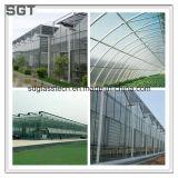 温室のための強くされた低い鉄ガラス