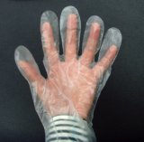 Prüfung Wegwerf-PET Handschuhe hohes Quliaty