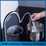 La vente chaude sur le traitement simple balayé par Amazone d'acier inoxydable de nickel abaissent le robinet de bassin de cuisine de pulvérisateur