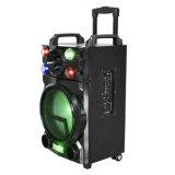 10 Zoll-Stadiums-Lautsprecher Bluetooth Batterie-Lautsprecher F10-23