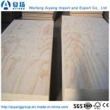Le peuplier Core contreplaqué de bois de placage de pins face commerciale