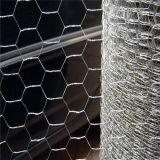 철강선 6각형 철망사 직류 전기를 통한 동물성 감금소
