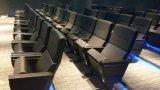 De nieuwe Stoel van de Zaal van de Conferentie van de Zetel van het Auditorium van het Theater van het Ontwerp