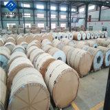 Decken-und Dach-Anwendungs-PE/PVDF beschichteter Aluminiumring für Vietnam-Markt