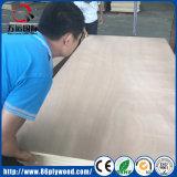 중국 Linyi 공장 포플라 상업적인 합판 4X8