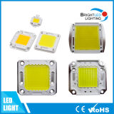 10W al chip di Bridgelux LED della PANNOCCHIA di 30W 120lm