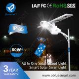 Réverbère Integrated solaire de batterie au lithium IP65 avec le détecteur de mouvement