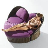 腰掛けとセットされる柔らかくSGSによって証明される二重屋外の庭の藤のソファー