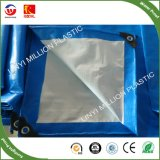 A China de HDPE Olive Net Redes Colheita Azeite Sombra Agrícolas Net
