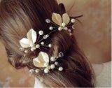 Accessori eleganti della sposa delle forcelle alla moda della perla bei