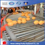 H-Rahmen-Schicht-Batterie-Geräten-Rahmen für Huhn-Vogel-Bauernhof