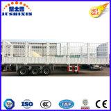Semi-reboque de estaca de gado para exportação