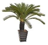 Las mejores plantas artificiales venta de Gran Cycas Jf14010823