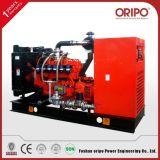 de Stille ReserveGenerators van het Aardgas 350kVA/280kw Oripo met de Alternators van Één Draad