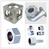 OEM Stainless Steel Pump Body Precision Investment Casting Parte con RoHS Certificated