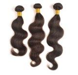 工場価格のRemyのバージンのインドに人間の毛髪の編むこと