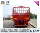 3 Aanhangwagen van de Vrachtwagen van de Aanhangwagen van de Staak van assen (omheining) de Semi