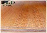 1220*2440 (4*8) madera contrachapada de la melamina de la base E0 E1 del álamo/de la madera dura de 6/9/12/15/18m m para los muebles/la construcción