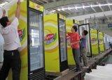 Tipo del refrigerador de la visualización y refrigerador de Berverage de la certificación del Ce