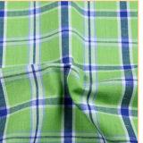 Tela teñida hilado 100% de la camisa de las mujeres del algodón
