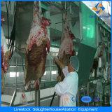 Completare la linea di trasformazione strumentazione della linea di macello automatica delle pecore