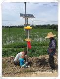 태양 농업 비행거리 곤충 살인자 빛