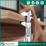 Bingtangor, cedro do lápis, madeira compensada comercial da face de Okoume, madeira compensada de embalagem