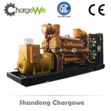 Le gaz naturel de la biomasse// Le biogaz 100kw Groupe électrogène de puissance