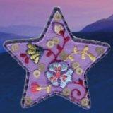 La bella zona del ricamo di disegno della stella
