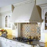 El nuevo diseño inyecta el azulejo rústico 600X600m m de la porcelana