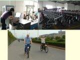 Bicicletas Eléctricas de Montaña del Litio de Lon de Batería del Eje del Motor (JB-TDE05Z)