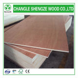Furniture Decoration를 위한 18mm Commercial Plywood Used