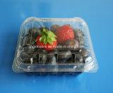 125グラムのプラスチックフルーツの包装ボックスのためのブルーベリーのパッキング容器