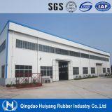 Moltiplicare il nastro trasportatore di nylon del cotone Ep/Polyester del fabbricato