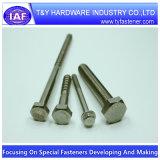 Hex Sträfling-Schrauben und Schrauben des China-Hersteller-A2 A4