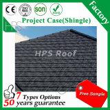 Le assicelle lapidano le mattonelle di tetto rivestite del metallo