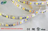 SMD2835 lumière de bande continuelle du courant DEL avec la lumière blanche de décoration de couleur