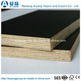 Matériaux de construction du film Face à partir de Weifang usine de contreplaqué