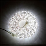13mm 에너지 절약 밧줄 빛 공정한 판단 높은 광도 밧줄 빛 220V