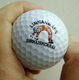 Принтер Inkjet Byc цифров UV для логоса шара для игры в гольф