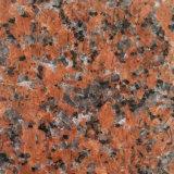 Parte superiore rossa di vanità di punto del granito del granito più poco costosa G562 della foglia di acero della pietra