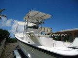 対の船外モーターを搭載するLiya 25FTのガラス繊維のボート