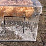 Caixa acrílica personalizada de Holde do vário pacote 9 de Rosa para a flor