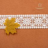 Type de produit de lacet et broderie africaine de lacet de décoration de talons