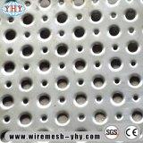 أنواع مختلفة من فتحة بئر شكل يثقب معدن [سكرين دوور] شبكة
