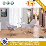 현대 강철 금속 기초 직물 실내 장식품 여가 의자 (HX-sn8016)