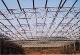 Красивейшее здание конструкции стальной структуры с большой пядью