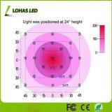 A planta hidropónica do diodo emissor de luz do espetro cheio cresce clara com 300W-1200W AC85-265V